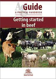 Beef Ag Guide - Getting Started in Beef